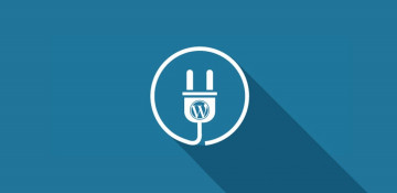 Отключаем проверку обновлений WordPress и плагинов